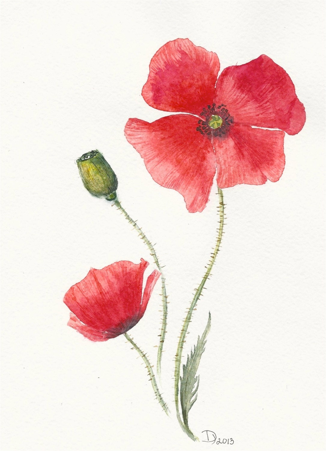 Flowers Original Watercolor Painting Red Poppy