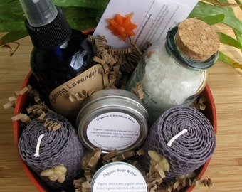 Gift Basket Organic Bath and Body ('planted' in a coral colored eco-planter). Ships USPS Priority!