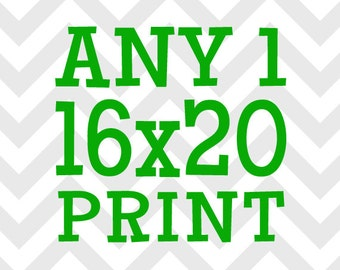 Any (1) One 16x20 Print - You Choose the Print and Colors