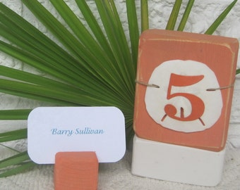 Wood  Table Number - Beach Sand Dollar -  Coral w/White base