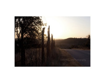 Fenceline Texas Landscape Fine Art Photography Rural Country Back road Hill Country Dawn Photography 11x14 Home Decor Rustic Art Western Art