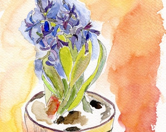 Hyacinth with terracotta background // watercolour / apricot / blue / ooak / original