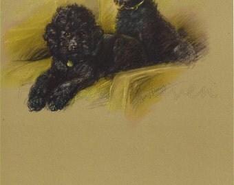 POODLES - 1940s Dog Print,  Lucy Dawson, Poodle Dog Gift, Wall Decor, Vintage Animal Print,  Art  Illustration, Home Decor, brown black, B-4