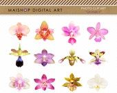 Flowers Clip Art + Digital Collage Sheet 'Orchids II' Scrapbook Graphic, Embellishments, Elements... For Invites, Cards, Graphic Design...