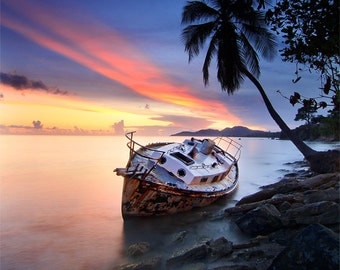 Tropical boat, beach, shipwreck photograph, vertical 8x10 print matted on white 11x14 mat. Boat, palm tree, sunset, Vieques, Puerto Rico