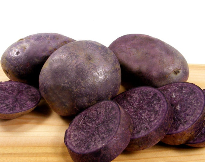 Purple Majesty Seed Potatoes Certified Organic and Virus Free 2 Lbs. -  Purple Potatoes Non-GMO SPRING SHIPPING