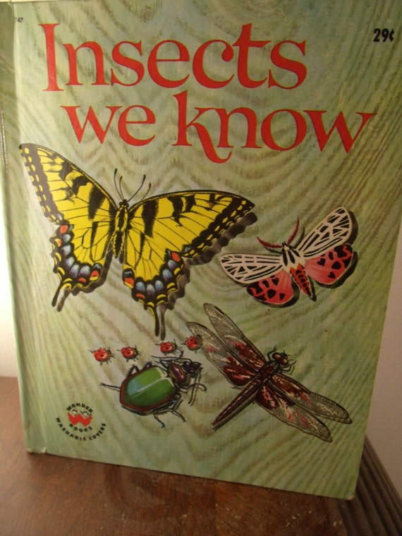 Illustrated Children S Book Covers : Insects we know illustrated children s hard cover book