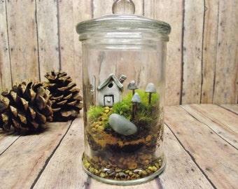 Small Jar Terrarium - Live Moss - Fairy House - Glow in the Dark mushrooms - Miniature lantern - Fairy Garden - TERRARIUM