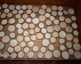 75 Small maple wood slices