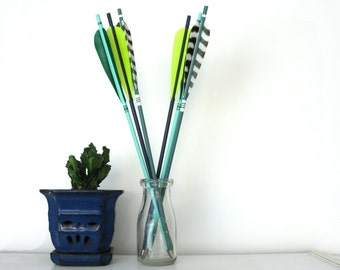 Neon Green Arrow Decor Wild Striped Pattern Shelf Decoration Archery Set