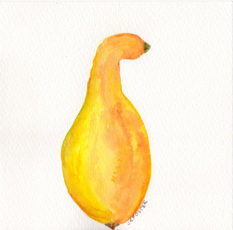 Original Yellow Squash Painting watercolor Vegetable series