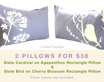 Limited Time Sale 2 Slate Gray Bird Pillows for 38 US Dollars