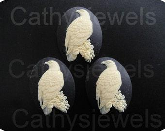 Ivory Eagle Portrait Cameos Set Of Three 40x30