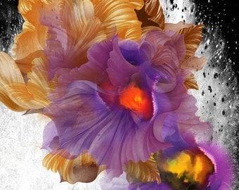 Desktop Wallpaper Floral 2