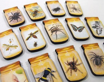 Collection of Bugs in Jars - 15 Wood Cut Specimens