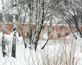 Ancient Architecture. Prink Brick Bridge. Birch trees. Tsaritsyno Bridge. Moscow, Russia. 8x10 print