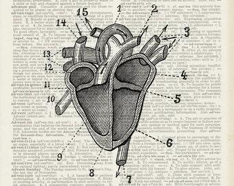 Vintage Heart print