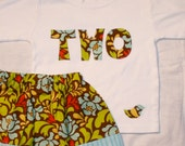 Girls Second Birthday TWO shirt and matching skirt set - 2T long sleeve - lettering in brown blue yellow green red Pop Garden fabrics