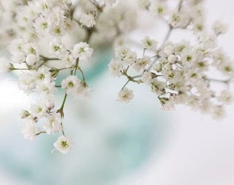 Ethereal Art,  Baby's Breath Photograph,  Shabby Chic Wall Decor,  Flower Photography, White Flower Still Life