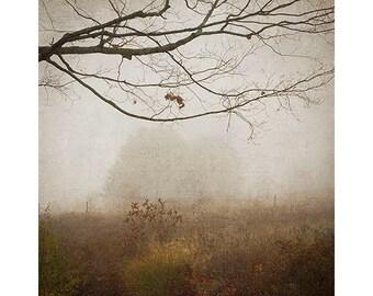 Landscape Photography, Rustic Wall Decor, Misty, Foggy,  Earth Tones, Sepia Print, Living Room Decor
