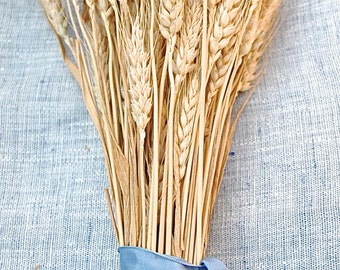 Bulk Stems Western Golden Wheat