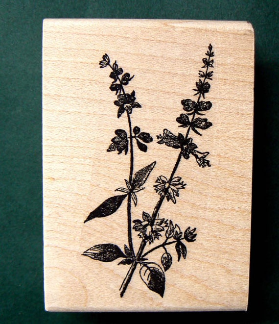 P28 Herb, mint rubber stamp Wood Mounted