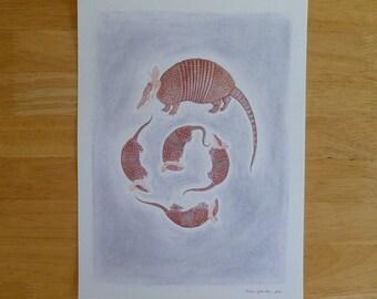 Nine-Banded Armadillo Illustration - 9x12 Archival Digital Art Print