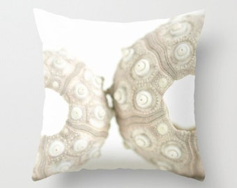 White Urchin Pillow Cover Pillow Cover Natural History Ocean Theme Sea Marine Decor Beach House Decor Beach Decor Urchin