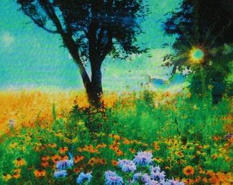 Prairie sunrise, 4x4, Fine Art photograph, mixed media, flower prairie, spring, tree, landscape