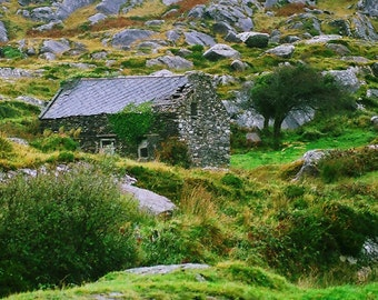Irish Cottage, Ring of Kerry, Ireland Photography, Irish House,  Green And Grey, Landscape Photo, Irish Decor Wall Decor Architecture Print