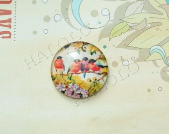4pcs handmade four birds round clear glass dome cabochons 25mm (250648)