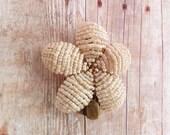 Cream Flower Hair Clip Winter White - Ododo Originals