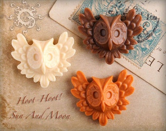 5 pcs Owl Resin Cabochons ~ Mix and Match ~ Make Beautiful Rings And Pendants