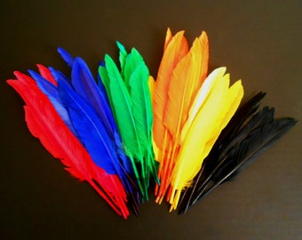 Several Packages of Brightly Colored Feathers for Crafting, Flower Arranging, Sewing, Hats