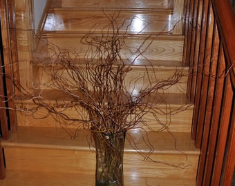 giant bunch curly corkscrew WILLOW Branches 24-36 inchDramatic Arrangements