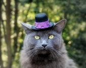 Jimi Hendrix Cat Hat - Fun Cat Costume - Pet Halloween Costume - Cat Photo Prop