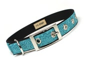 turquoise lace doily metal buckle dog collar (3/4 inch)