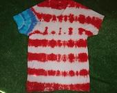 Large Vneck Tie Dye Tshirt