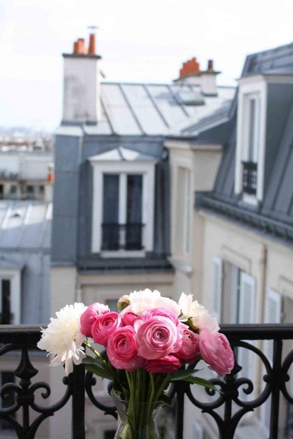 Paris photography paris apartment pink ranunculus on the - Flowers for apartment balcony ...