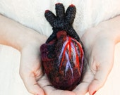 HeartFelt (Black) - Anatomical Heart