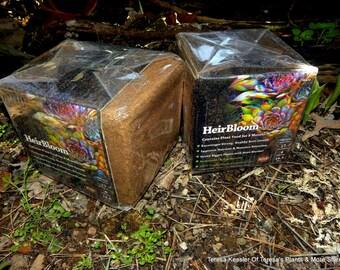 Smaller sandwich bag of Sedum-succulent-Cactus soil-Eco friendly and sustainable