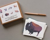North American Animal Cards // Set of 8