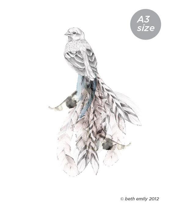 Bird of Paradise    A3 SIZE