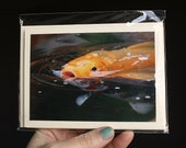 Photo greeting cards. Set of two with envelopes. Koi fish