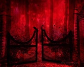 Nature Photography, Red Black Forest Woodlands Trees, Surreal Red Gothic Gate Nature, Red Crow Raven on Gate, Gothic Red Fantasy Nature
