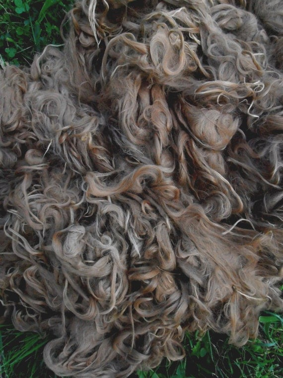 "Suri Alpaca Fiber, 6.5""', Medium Fawn, 2 Ounces, Simeon"