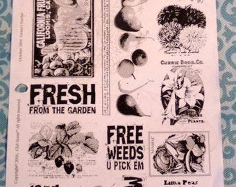 Farmers Market - Great Unmounted Rubber Stamps -  New Set of 13 - Cards - Collage - ATC - Domino Art - Scrapbooks - FREE Shipping