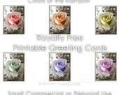 Printable Greeting Cards 7 Individual Roses Rainbow Colors Blank Inside Digital PDF file - Instant Download Royalty Free Commercial Use