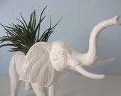 Upcycled Toy Planter - White Elephant with Air Plant
