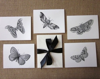 Moth Butterfly Note Cards Set of 10 with Matching Envelopes